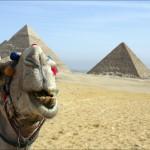 Если тур в Египет, то вместе с компанией Дилайт