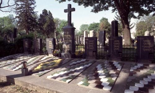 Венское кладбище