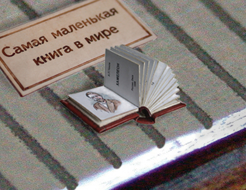 Маленькая книга