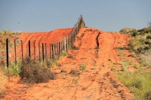 Самый длинный в мире забор